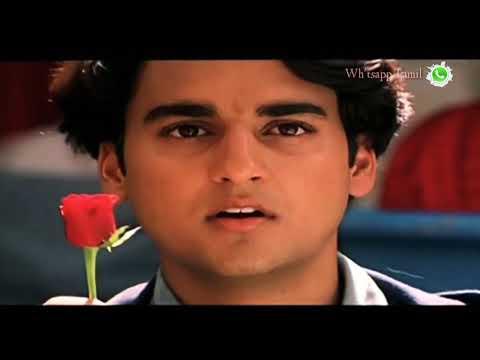 Valentines day Whatsapp Status Kadhalar Dhinam whatsapp status (arr)