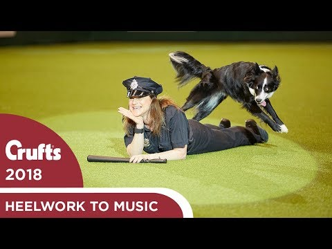 Freestyle Heelwork to Music Competition - Part 1 | Crufts 2018