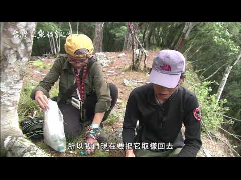 台灣黑熊保育紀實 1280