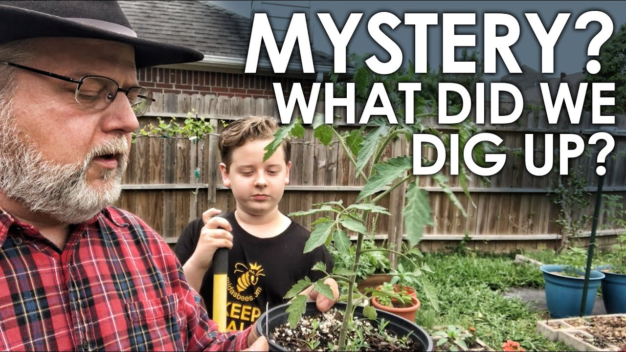 A MYSTERY! We Dug Up THIS! || Black Gumbo