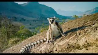 Island of Lemurs: Madagascar at the Fleet Science Center