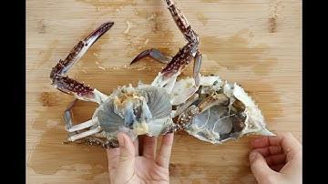 꽃게 손질법 : How to trim crab  [밥타임 하우투]