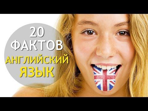 Популярные прилагательные английского языка