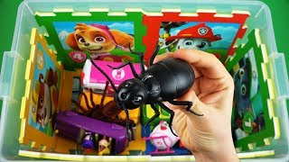 Characters, colors & vehicles, learn videos for kids: Princess, Peppa Pig, Insects, Ben & Holly etc