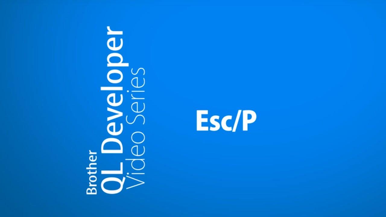 How to develop a custom Esc/P SDK | Brother QL Label Printers