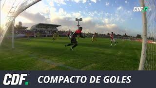 Palestino 4 - 1 Universidad de Concepción | Campeonato AFP PlanVital 2019 | Fecha 4 | CDF