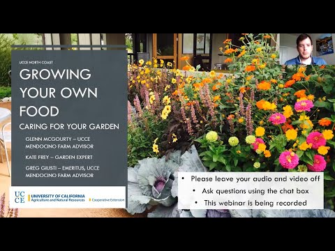 Growing Your Own Food - Caring For Your Garden