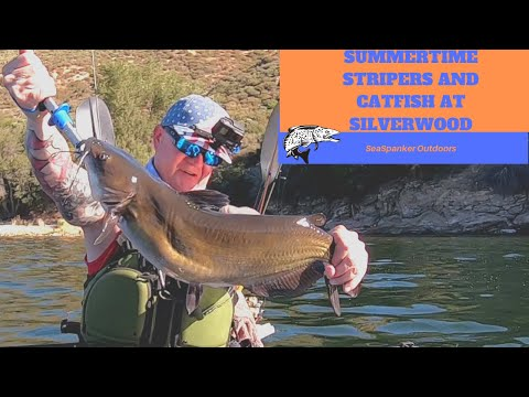 Summertime Fishing For Stripers And Catfish At Silverwood Lake 8-11-20