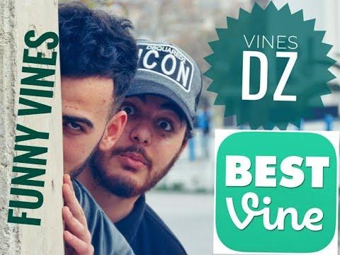 CSP – Funny Vines – DZ VINES 1