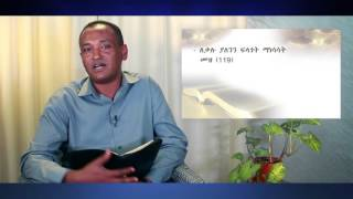 NEW BIBLE STUDY SEŔIES (Intro)