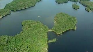 Finlande : Lacs et pins