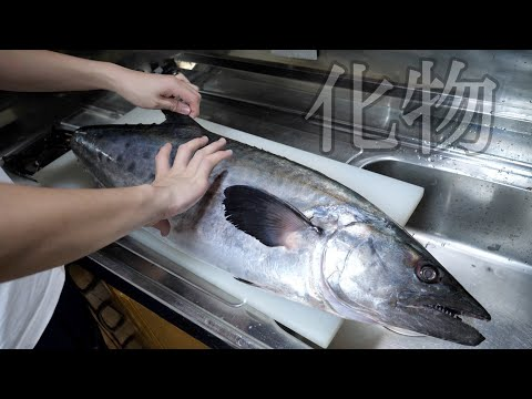 Super rare fish in Japan [Ushisawara] was a superb! I will explain more carefully than usual. from YouTube · Duration:  12 minutes 5 seconds