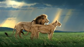 Speed Paint - Lion Pair