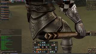 Lineage 2 Classic NA - Bots in Dragon Valley / Lineage 2 Classic bots