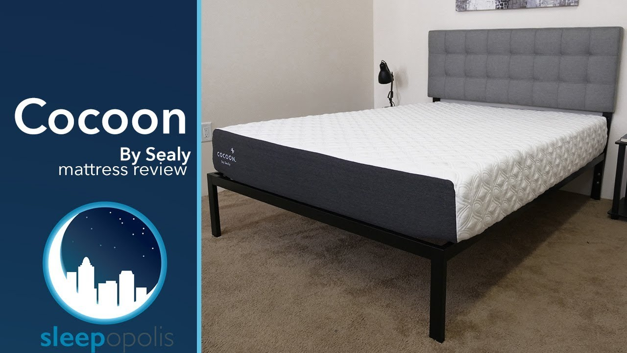 Sealy Co Mattress Review