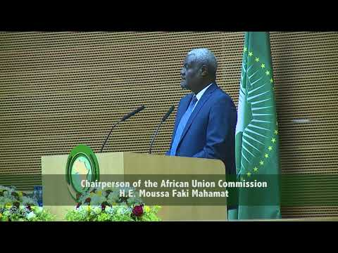 H.E. Moussa Faki Mahamat The Chairperson of the African Union Commission