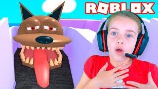 Осторожно ЗЛАЯ СОБАКА в ROBLOX Даша убегает от собаки Веселое видео ПОБЕГ ОТ СОБАЧКИ
