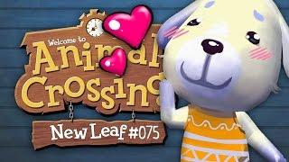 Die Baustelle, eine Doris und die Garage! ★ Animal Crossing: Igelbau【S02#075】
