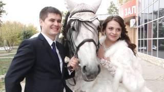 Свадьба Оренбург Видео Фото