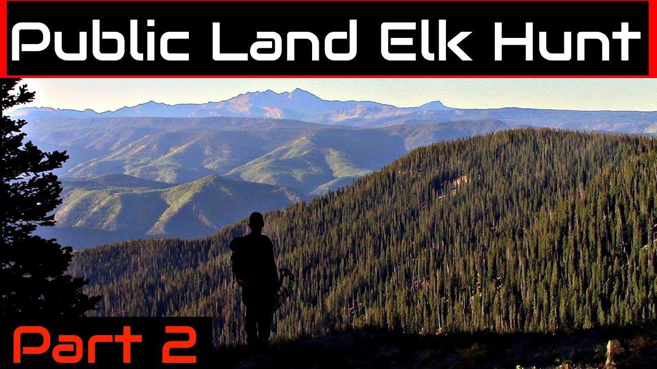 Calling for ELK with a WATER BOTTLE | Colorado Public Land OTC Elk Hunt  Part 2