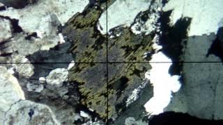 Clorita 3   Em rocha plutônica