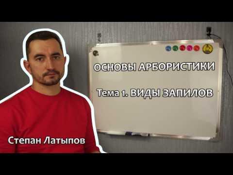 Степан Латыпов Беларбо Виды запилов ветвей и стволов - Основы арбористики. Тема 1