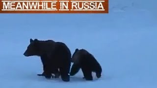 Russian Woman vs Bears
