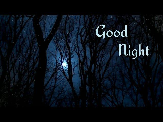 Good night status   Good night videos for whatsapp