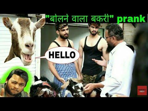 बोलेनेवाला बकरी प्रैंक!! Nadir Ali style  Bolnevaala bakri prank   Eid special   PRANKS IN INDIA