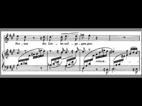 Im Wunderschönen Monat Mai - High Key A - Schumann - Accompaniment