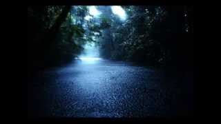 """60 mins"" Nature Heavy Rainstorm Relaxing Sounds (No Music)"