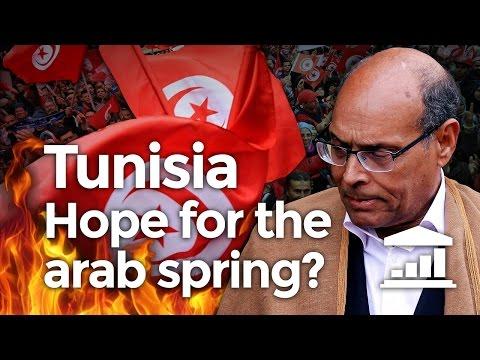 Can TUNISIAN democracy survive ISLAMISM? - VisualPolitik EN