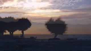 Brigitte Fassbaender: Lieder (Sapphische Ode, Dein blaues Auge...) by Brahms
