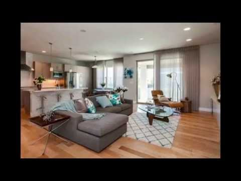 Gorgeous Contemporary Home Located in Stapleton