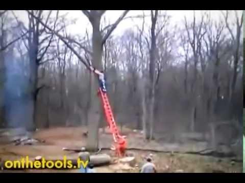 Trädfällning som går åt h-e