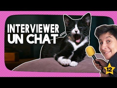 INTERVIEWER UN CHAT [ÉPISODE 12]