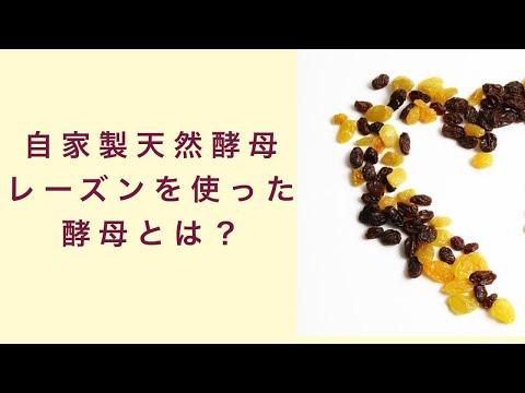【自家製天然酵母】レーズンを使った酵母とはどんなもの? フルーツ酵母 自家製天然酵母 パン教室 教室開業 大阪 奈良 東京 名古屋 オンライン講座