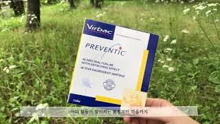 [Ipatcare]강아지 진드기 방지 목걸이_버박 프리…