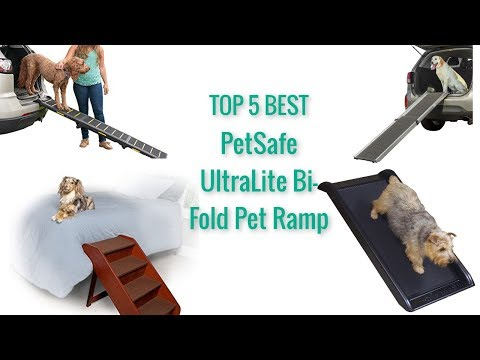 top-5-best-pet-ramp-|||-2019