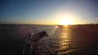 Kamperland Beach