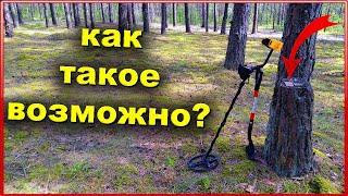 Коп 2021 в лесу Беларуси | ОБАЛДЕТЬ! КАК ТАКОЕ ВОЗМОЖНО! |  Коп монет в Беларуси 2021