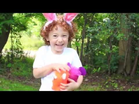 Mr. Chris & the Gassy Bubbles - Little Bunny Foo Foo