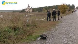 Смертельное ДТП в Золочевском ауданында: погиб мотоциклист