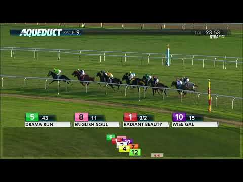 Raucous - 2017 The Chelsey Flower Stakes