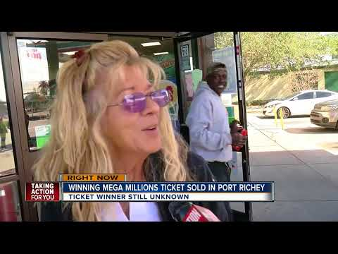 Mega Millions winner in Port Richey