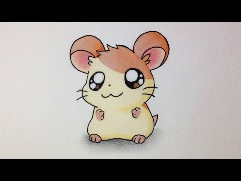 Comment Dessiner Un Hamster Kawaii Tutoriel Hamtaro Youtube