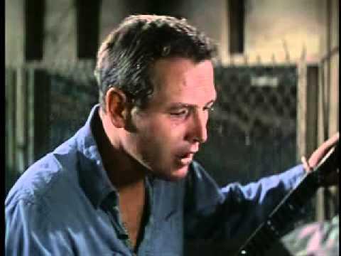 Paul Newman - Plastic Jesus (Cool Hand Luke OST)