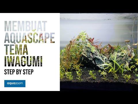 step-by-step-membuat-aquascape-iwagumi---pemula-pasti-bisa!