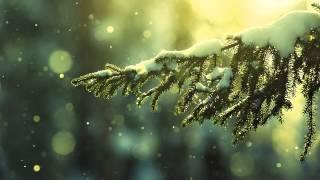 Audias - Waiting For You (Original Mix)