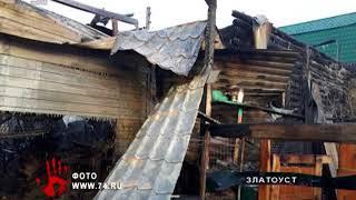 В частном приюте Челябинской области заживо сгорело 30 собак